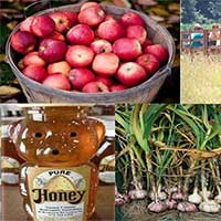 Harvest, Honey and Garlic Festival