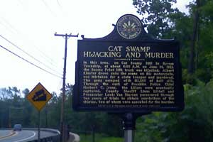 Cat Swamp Hijacking Marker