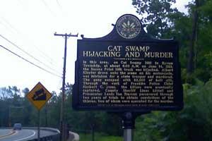 Cat Swamp Hijacking Marker
