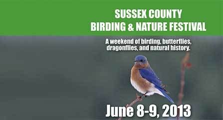 Image of Birding and Nature Festival Flyer
