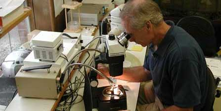 Sussex County Mosquito Control Laboratory